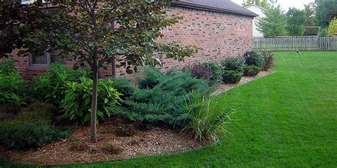 landscaping side of house lawn care landscaping lorain elyria avon sheffield amherst north ridgeville wix com