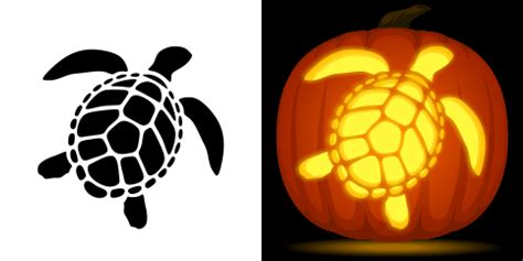 turtle pumpkin carving template free sea turtle pumpkin stencil