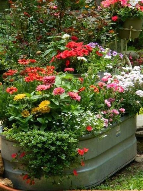Galvanised Planters For Garden by 25 Best Ideas About Water Trough On