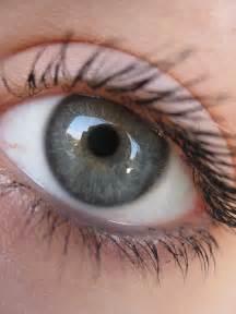 green eye color eye color