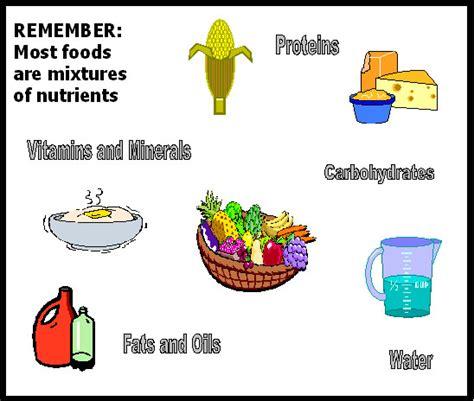 carbohydrates webquest 4th grade health webquest