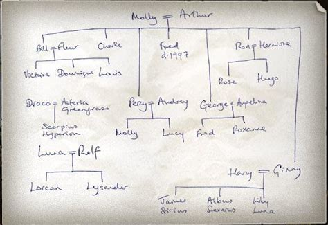 the cole family tree potter family and friends harry friends family trees harry potter photo 581328