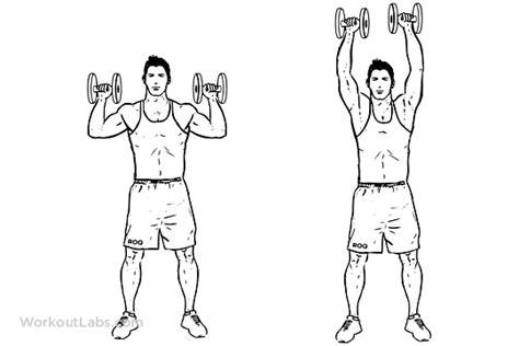 shoulder press diagram 3 best shoulders exerscises workout with j