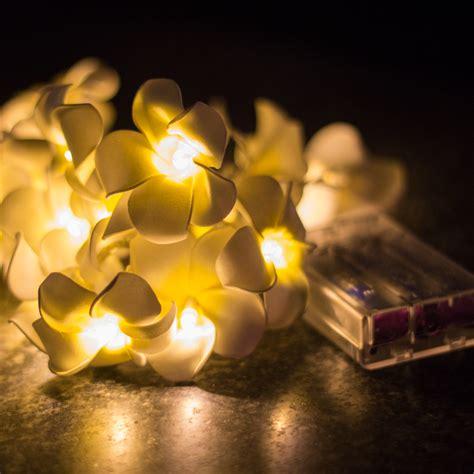 Frangipani Led Battery Operated Fairy Light Kiyolo Frangipani Lights