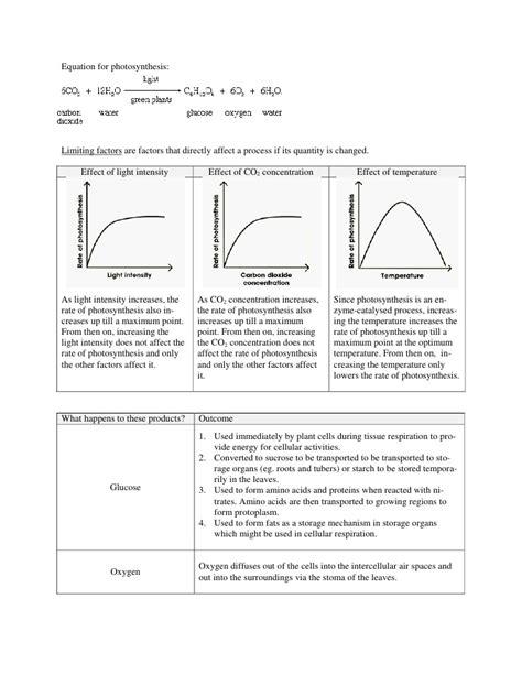 limiting factors worksheet answer key bio chapter 6 9 human plant nutrition transport
