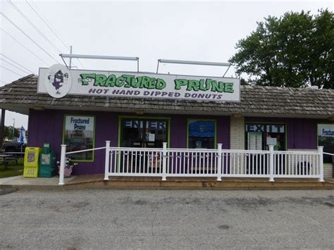 henna tattoos rehoboth beach temporary tattoos fractured prune picture of fractured