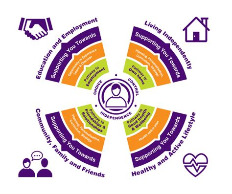 your person centred plan consensus support