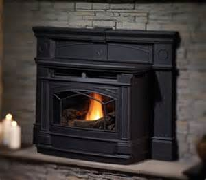 Wood Pellet Stove Insert Pellet Stoves And Inserts St Louis Mo
