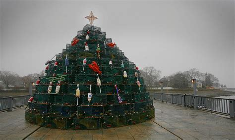 lobster pot tree gives christmas a cohasset twist news