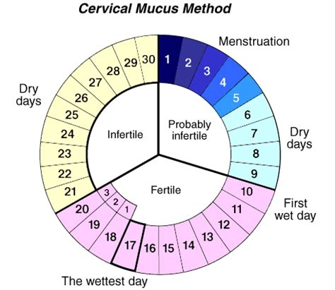 Calendar Method Calculator For Irregular Fertility Awareness From Birth Comparison Info