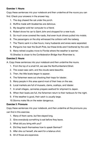 Nouns And Pronouns Worksheet by 14 Best Images Of Possessive Pronouns Adjectives