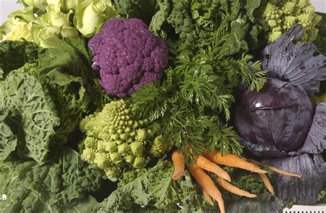 Safeway Background Check Safeway Trader Joe S Among Brands Listed In Vegetable Recall Sfgate