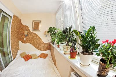 pflanzen im schlafzimmer pflanzen im schlafzimmer sch 228 dlich das sollten sie