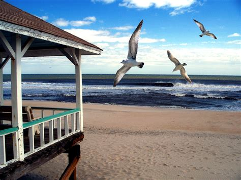 living on the beach beautiful sea beach landscapedesigntz