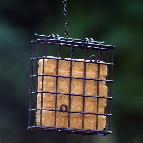 standard suet cage bird feeder dfohome