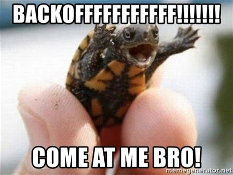 Come At Me Bro Meme Generator - backofffffffffff come at me bro angry turtle