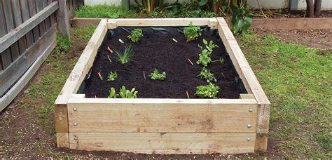 How to Build a Vegetable Garden Box   A Home Timber