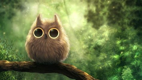 wallpaper android owl cute owl wallpapers wallpaper cave