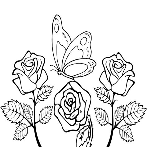 disegni da colorare fiori e farfalle farfalle da colorare e stare
