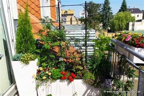 gel nder f r terrasse balkonbepflanzung ideen balkonbepflanzung ideen pflanzen