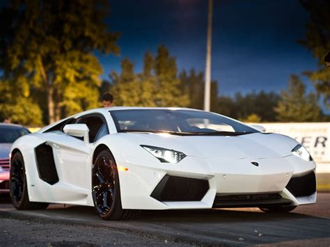gold and white lamborghini white and gold lamborghini aventador white lamborghini hd