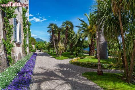 isola madre giardino botanico il grande giardino botanico di villa borromeo foto