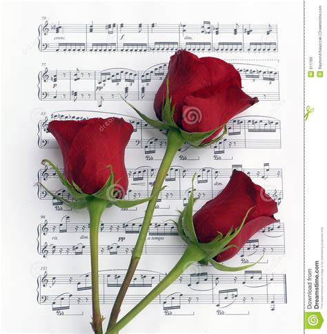 music on 1 musica z u2 beautiful day terbaru three rose music stock image image of notes piano love
