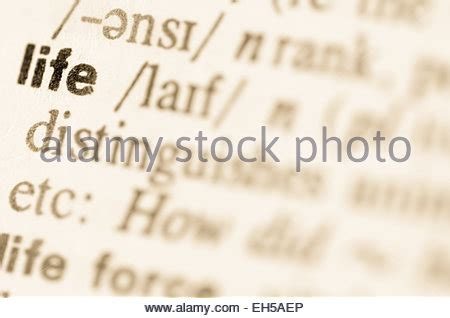 scrabble dictionary eh letter y letter letters word words dictionary abc alfabet