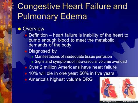 congestive failure when to put signs and symptoms of chf in adults grownup east ga