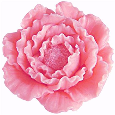 aliexpress buy 3d flower peony candle moulds
