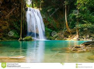 Animals And Plants In Tropical Rainforest - erawan waterfall thailand royalty free stock photography image 8965087