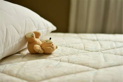 Removing Urine Smell From Mattress by How To Remove Urine Stains And Odors From A Mattress