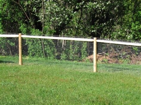 backyard fence for dogs the 25 best cheap fence ideas on pinterest cheap dog