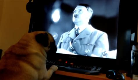 found pug youtuber found guilty after pug deemed quot grossly offensive quot