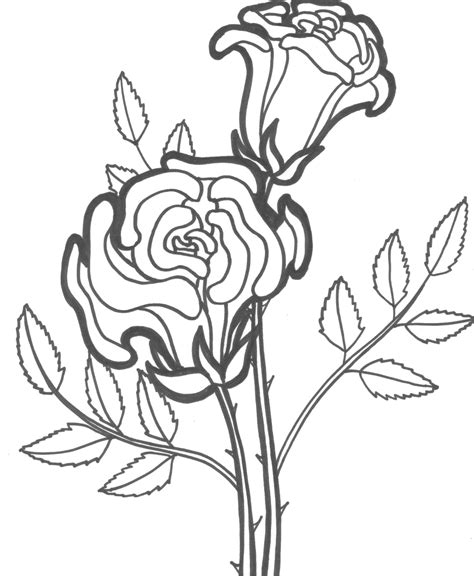 coloring pictures of roses and flowers free printable roses coloring pages for