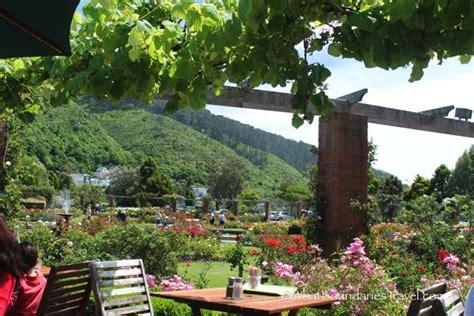 Botanic Garden Cafe Wellington Botanic Garden Photo Essay What Boundaries Live Your