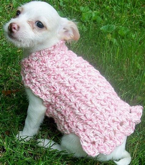 free crochet pattern for a dog coat 1000 images about chihuahua clothing on pinterest