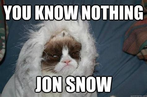 Grumpy Cat Snow Meme - game of thrones grumpy cat edition geekness pinterest
