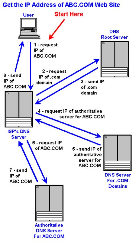 dns dictionary definition dns defined
