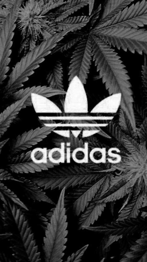 wallpaper iphone 6 adidas iphone wallpapers iphone 6 adidas wallpaper 2