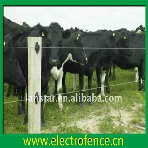 livestock and solar panels rangelands solar power cattle electric fence manufacturer lx