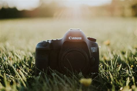 canon for photography why i switched back to nikon from canon scuffins