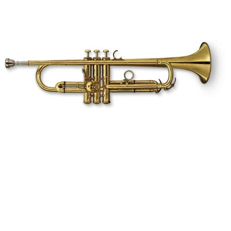 the trumpet of the what is a trumpet trumpet facts for kids dk find out