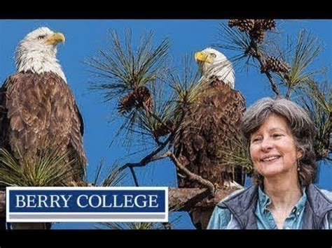 berry college eagle live berry college eagles live chat dr renee carleton