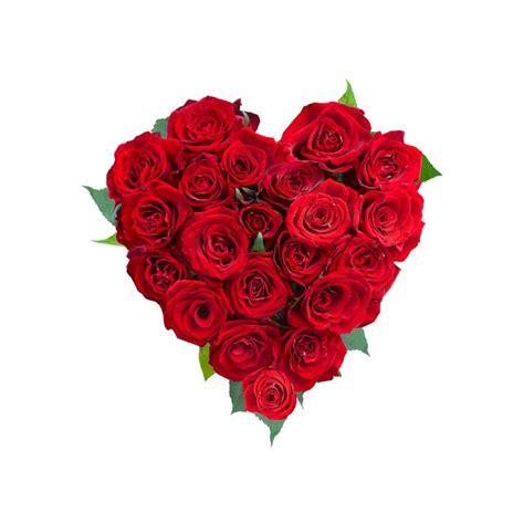 foto fiori rosse cuore di