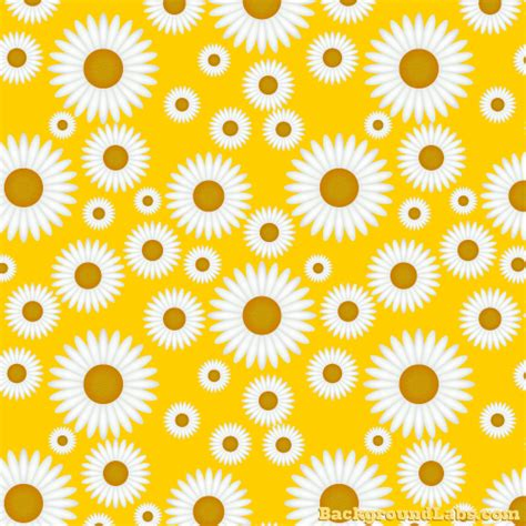 daisy background pattern vector seamless daisy pattern background labs