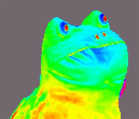 Frog Meme - image 313882 get out frog frogout me obrigue