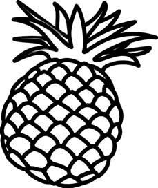 Pineapple Outline Clip Art At Clkercom  Vector Online sketch template