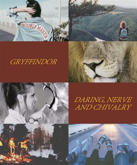 merrick the vire chronicles 59 best images about gryffindor aesthetic on sorting hat the sword and ravenclaw