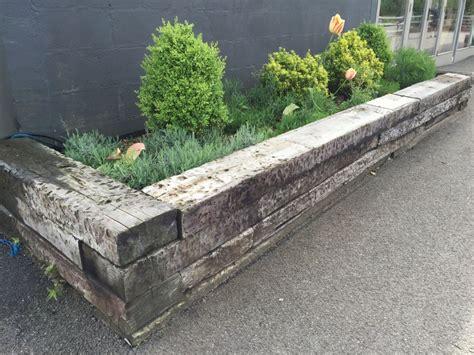 Sleepers Norfolk norfolk lavender railway sleeper raised beds